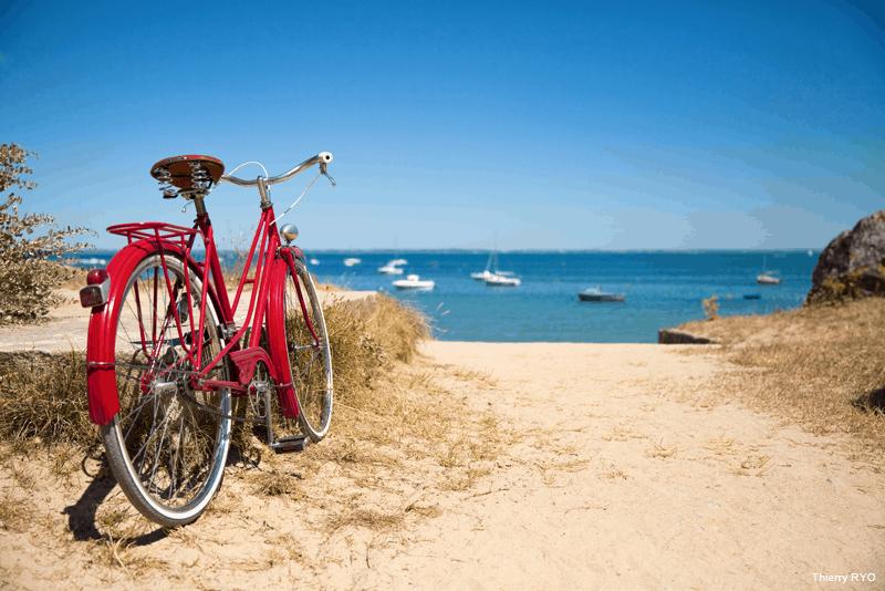 Proteger a bicicleta no Verao - WD-40